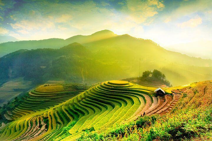 Ha Giang Harvest